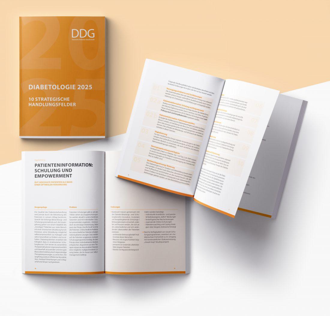 DDG - Broschüre Diabetologie 2025